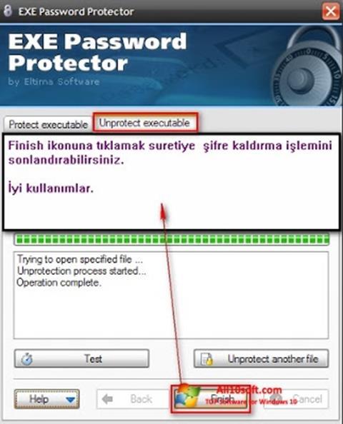 Screenshot EXE Password Windows 10