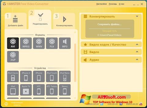 Screenshot Hamster Free Video Converter Windows 10