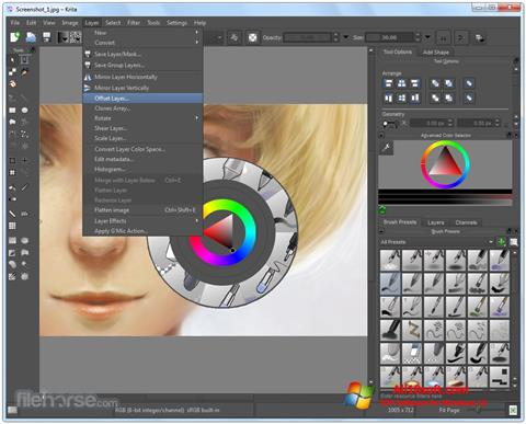 Screenshot Krita Windows 10